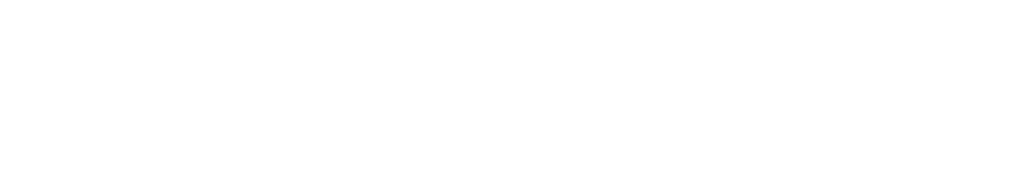 Markenlogo City Girls Berlin Escort Agentur